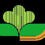 abruzzesevivaiservice